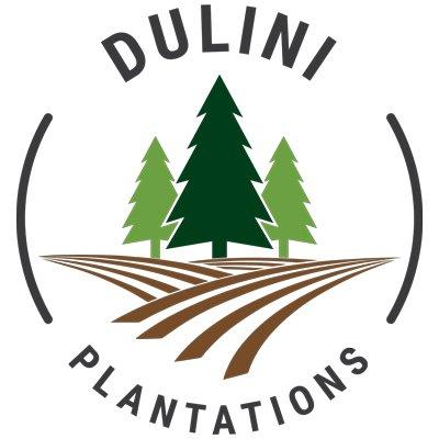 Dulini Plantations Logo