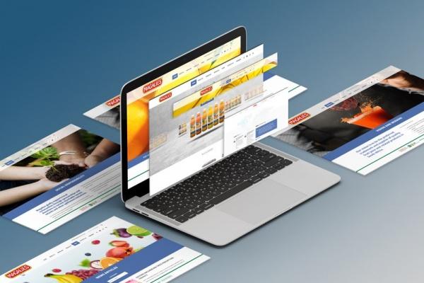 Magalies Citrus Web Design Johannesburg Isometric Screens